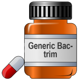 Generic Bactrim (Sulfamethoxazole/Trimethoprim)